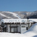 Beauty and the Beast Nozawa Onsen