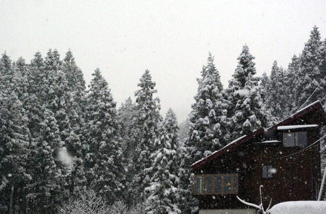 Nozawa Rental House Nagano