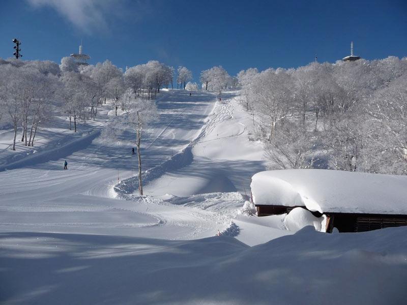 Japan snow cams