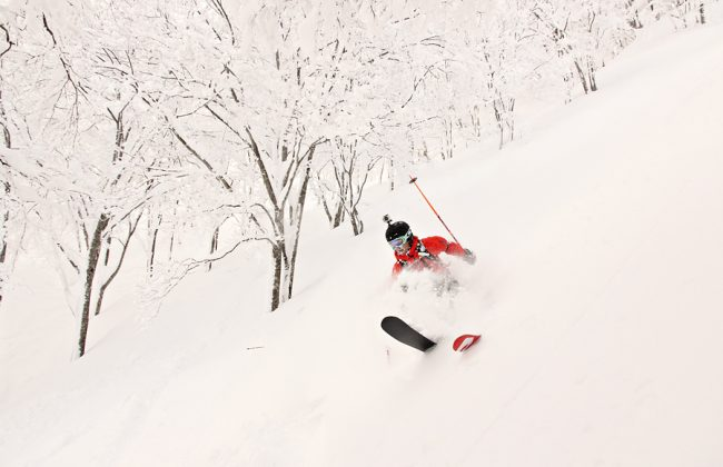 Big Dump Overnight Nozawa