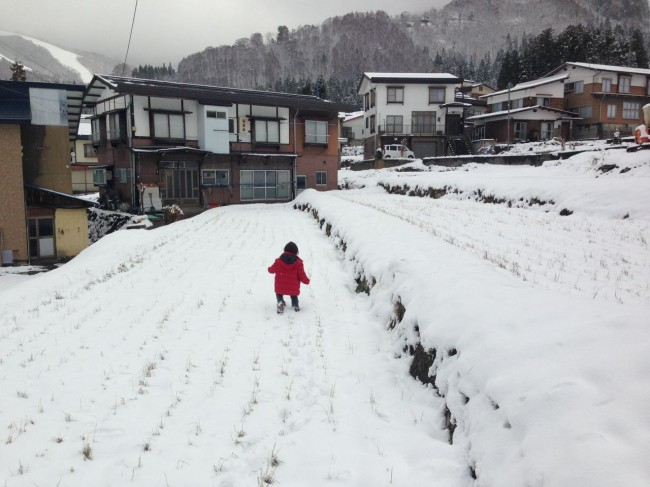 April is awesome strikes again with a 20cm dump in Nozawa Overnight