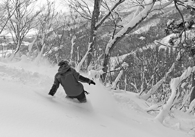Judita rides amongst the trees in early season Nozawa Onsen.