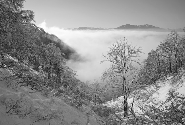 Fog engulfs the lower valleys surrounding Nozawa Onsen.