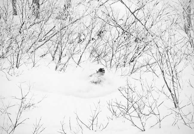 Jerry breaks through some small bushes to access some un-riden powder.