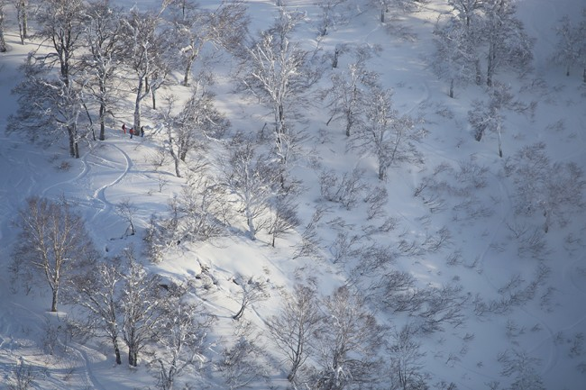 Nozawa Onsen backcountry from afar.