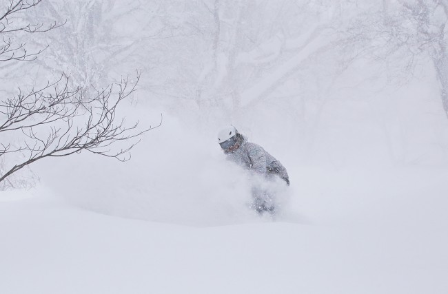 Expect conditions like this over the next week in Nozawa Onsen.
