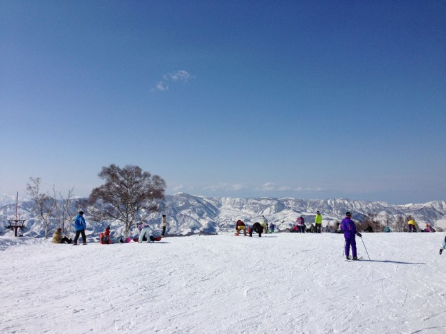 Beautiful March Bluebird in Nozawa