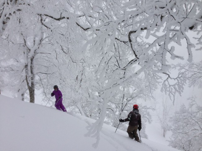 Gab and Luke from Nozawa Holidays have seem more powder days than your average. They said yesterday was one of the best!