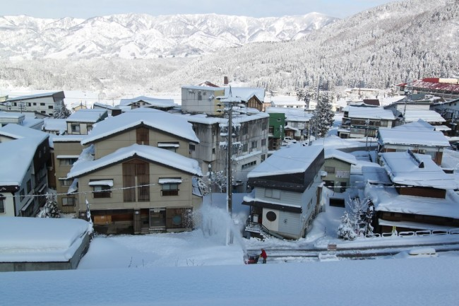 Hard to believe it is the end of March in Nozawa with 40cm overnight