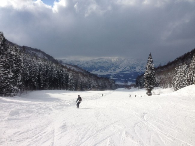 Powder everywhere in Nozawa even on the groomers.