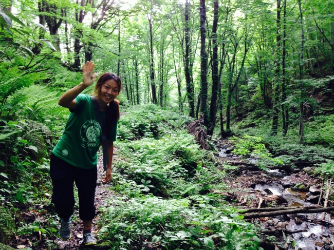 Greeting from Nozawa in Summer. Kyoko san looking for a waterfall for a summer dip