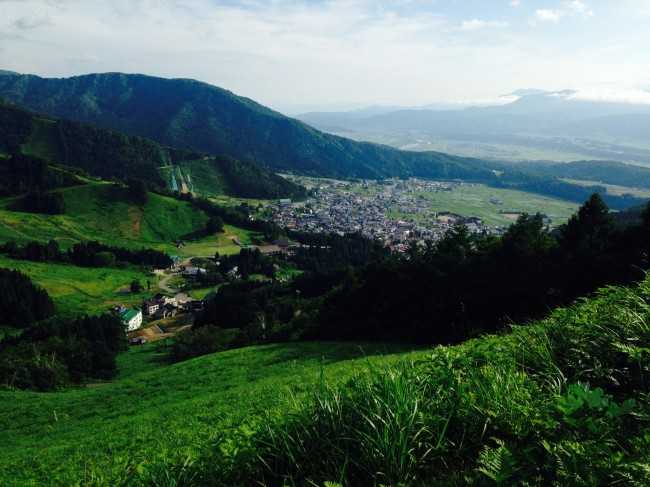 Fields of Green. Nozawa in the warmer months is also very beautiful and lots to see and do