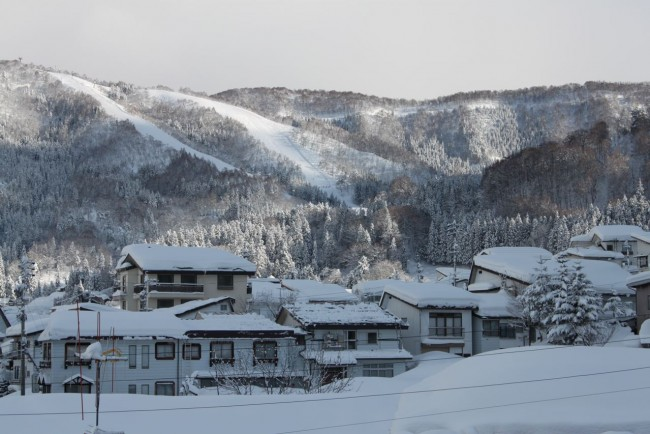 Oh what a perfect day in Nozawa almost 100cm of fresh fallen, sunshine and light winds!