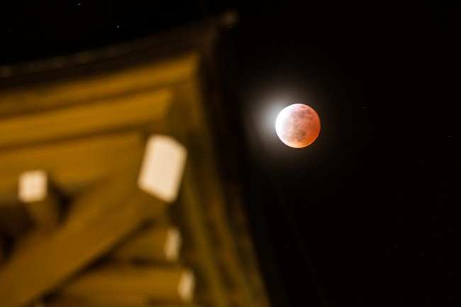 The lunar eclipse last night behind an onsen in town last night.