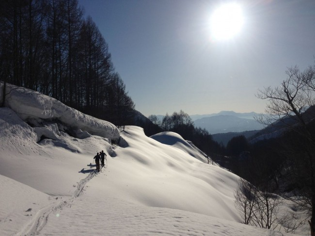 Great time of the year to do some Touring in the surrounding mountains of Nozawa Onsen