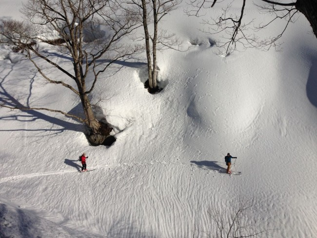 Road to anywhere great spring ski weather on the way for Nozawa Onsen