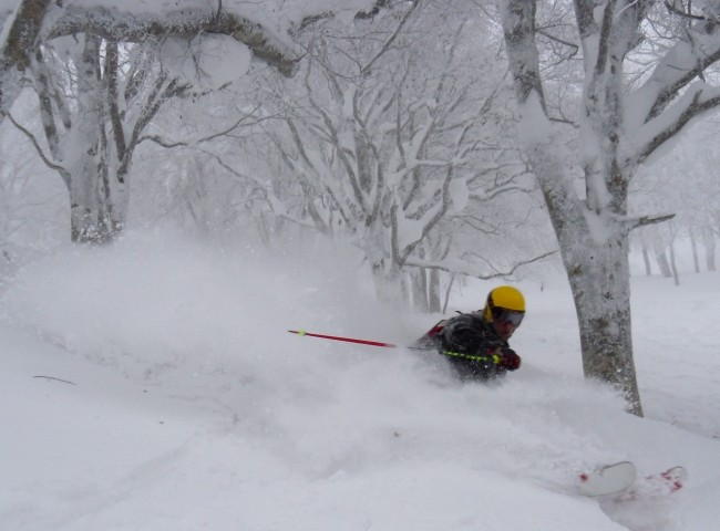 The Knee Deep Powder awaits in Nozawa Onsen