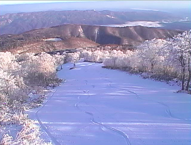Magic day up top and looks like some one has been busy over the weekend and grabbed first tracks down Yamabiko