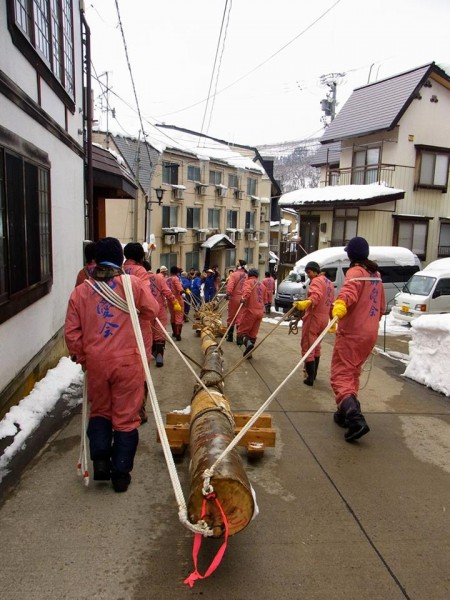 The big days leading up to the big night! Preparation for the Nozawa Onsen Fire Festival begins with dragging the trees thru the village