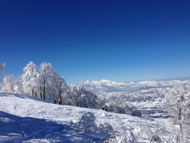 Top of the world. Nozawa Onsen always looks amazing after a good dump and the sun comes out. I guess thats why they call it Bluebird!
