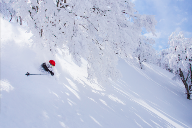 Jetstar Japan Sale on great fares and we sort the rest in Nozawa to ensure a great ski holiday