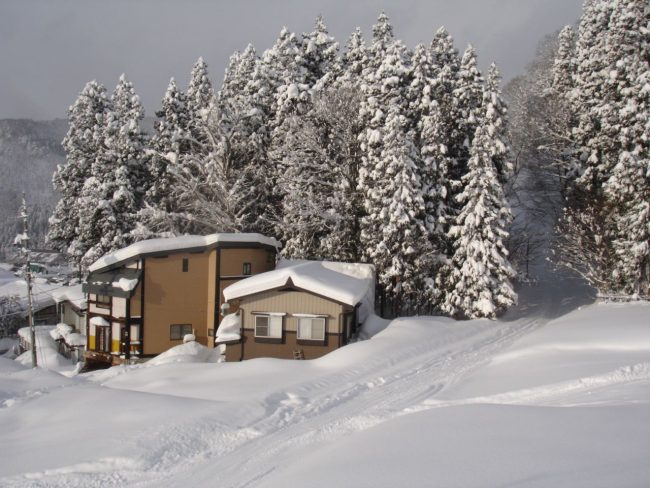 You can't get much closer to the lifts and home train in Nozawa than Koguma Lodge