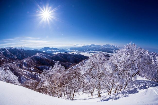 We get the snow but also the sunny days to enjoy it in Nozawa
