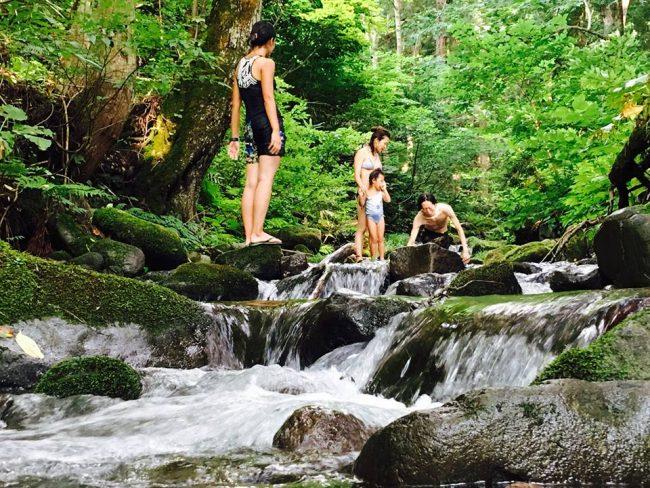 Nozawa Summer Swim