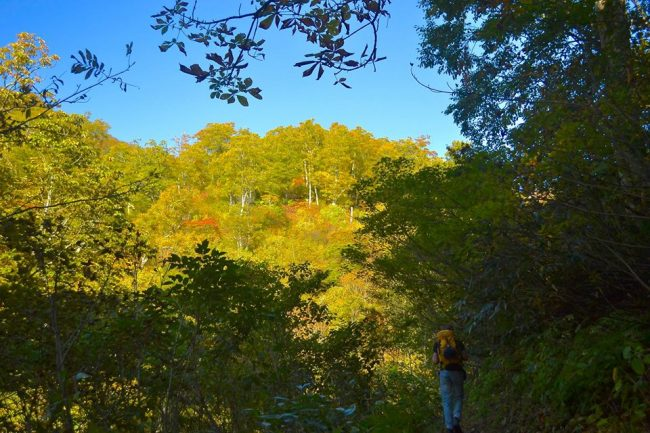 Hike Nozawa Autumn