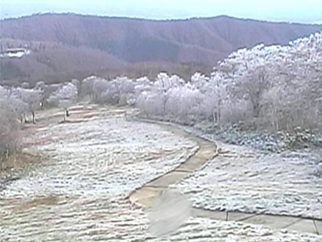 First Snow Nozawa Onsen