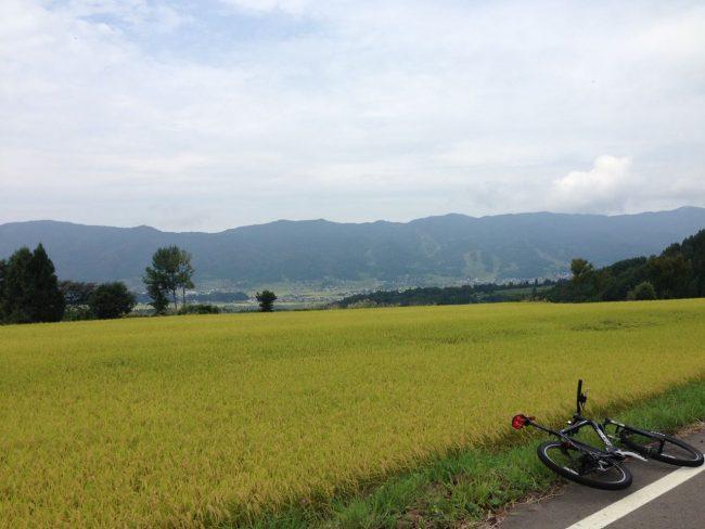 Ride Nozawa Togari Rice