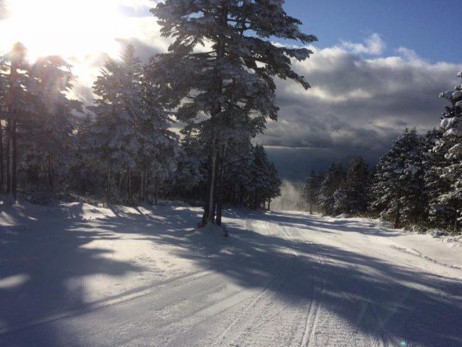 Nagano Ski Resort Open
