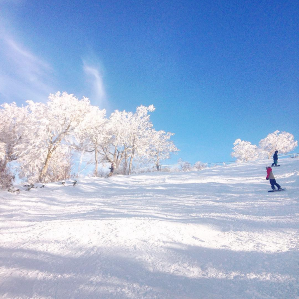 Nozawa Onsen Snowboarding