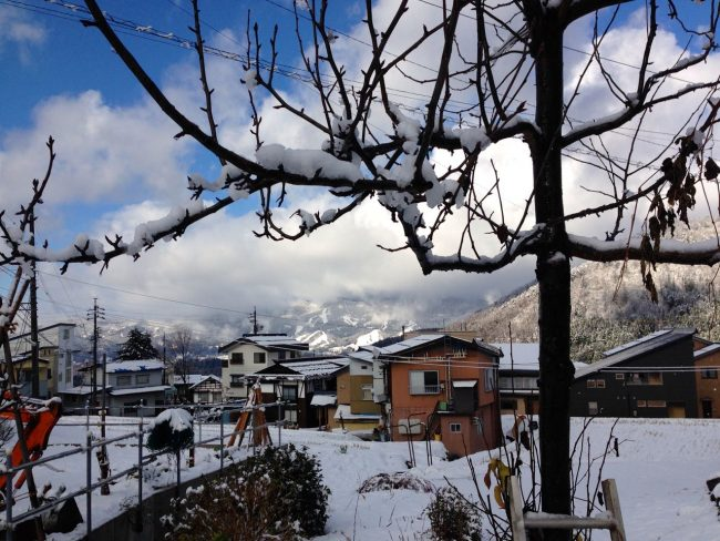 Snow Fall Overnight Nozawa
