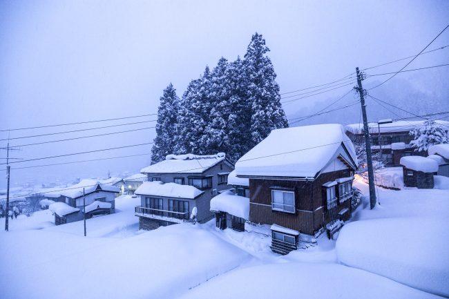 Nozawa Snow Report 22 January 2017
