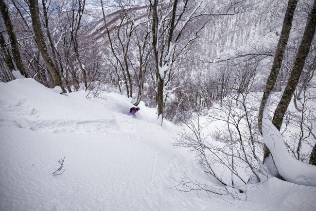 Nozawa Snow Report 9 January 2017