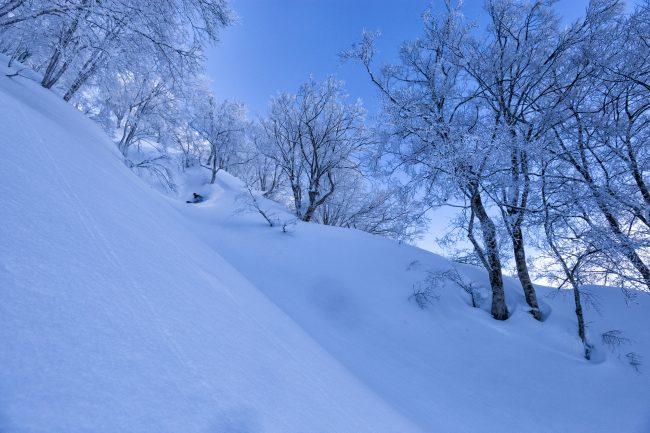 Nozawa Snow Report 3 February 2017