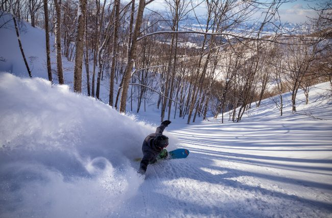 Nozawa Snow Report 5 February 2017