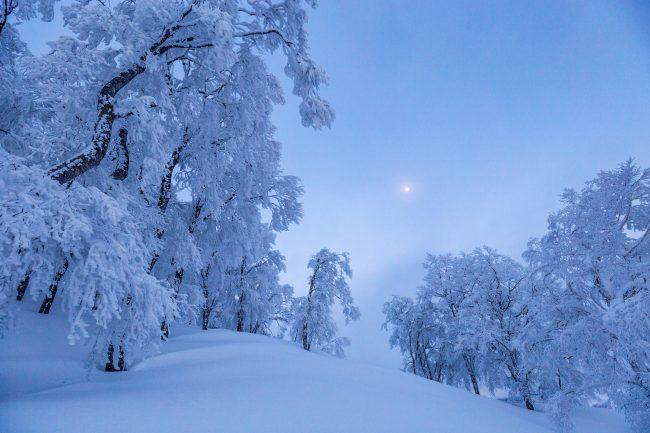 Nozawa Snow Report 10 February 2017