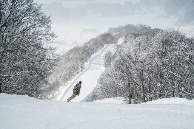Nozawa Snow Report 14 February