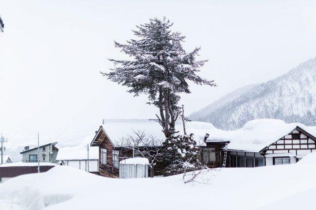 Plan Ski Trip
