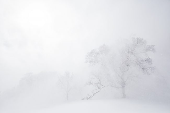 Nozawa Snow Report 8 March 2017