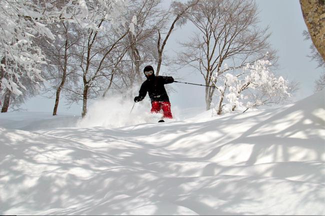 Tomas enjoying our recent snowfall