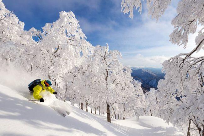 Lodge Nagano Reviews