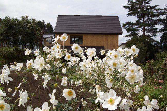 Harvest House Nozawa Onsen