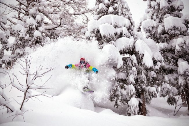 Ski Snowboard Improvement Courses Nozawa Japan