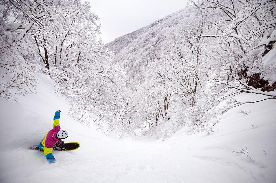 Ski Japan Cheap Flights Nozawa Onsen