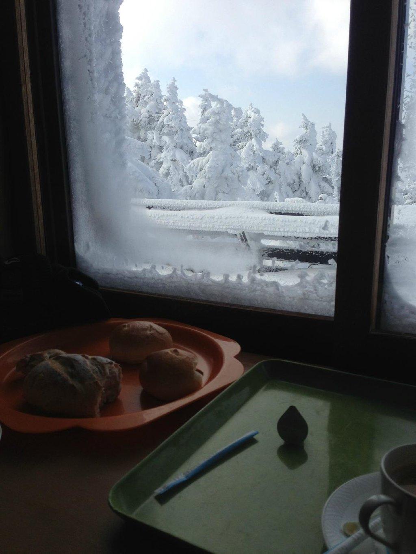 First Snow Report Nozawa