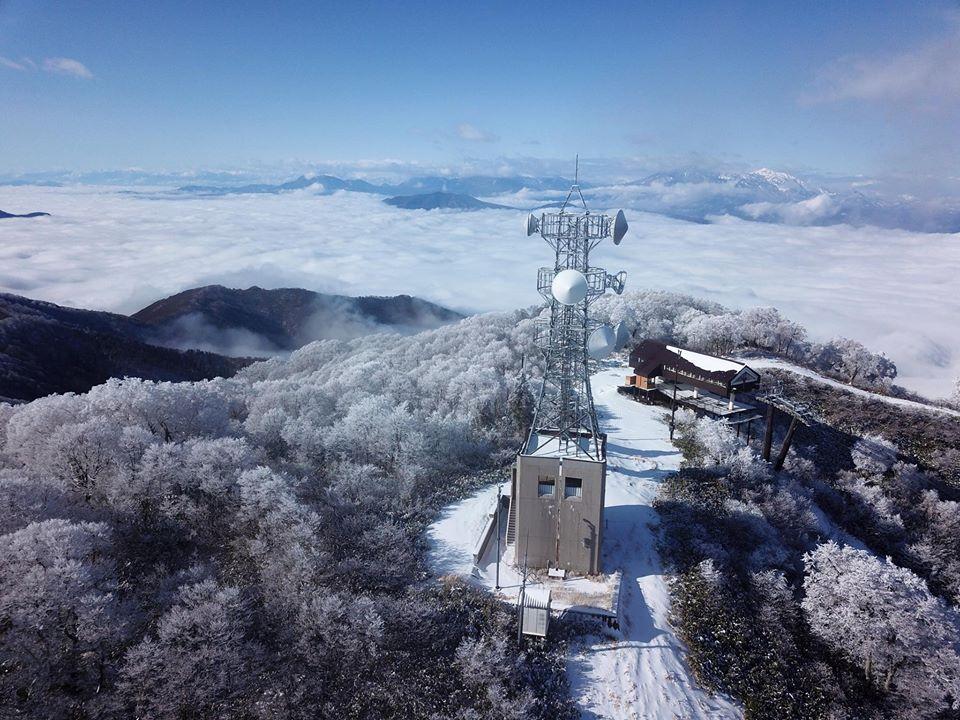 Heavy Snow Forecast Nozawa Onsen