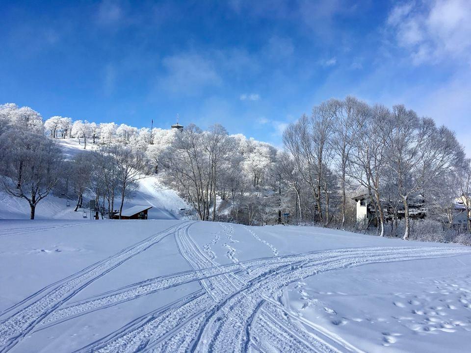 Nozawa Onsen Snow Report 2nd December 2017